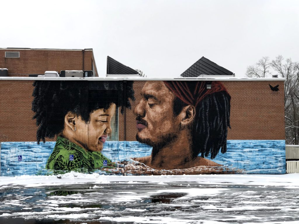 VASAF Mural at Waynesboro YMCA 2020